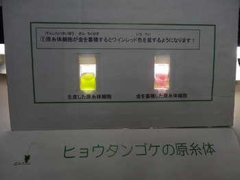 理研0001.JPG